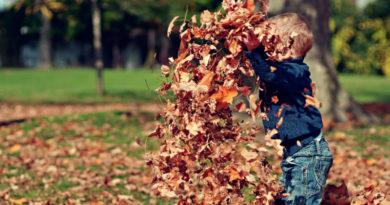 Co można robić z dzieckiem jesienią