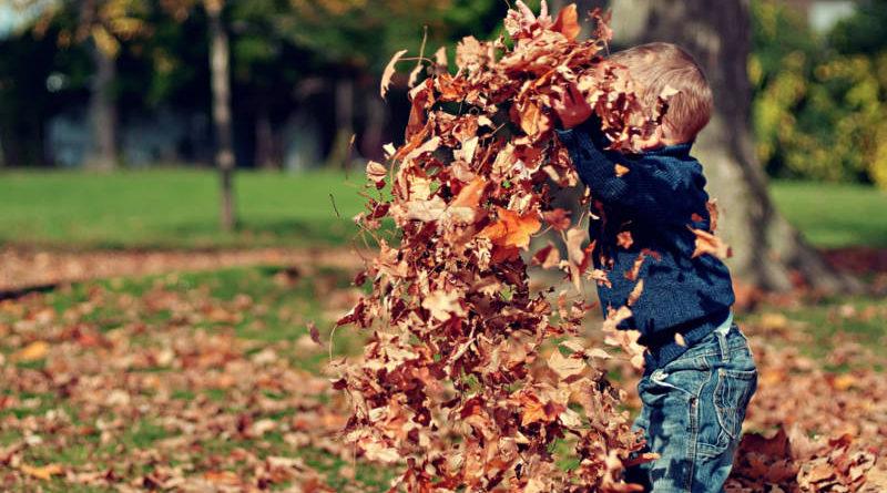 Jak spędzić jesień z dzieckiem
