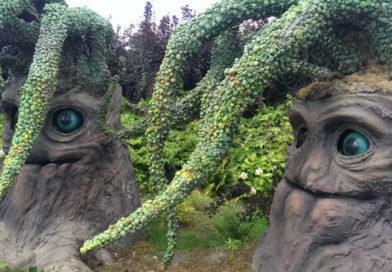 magiczne ogrody