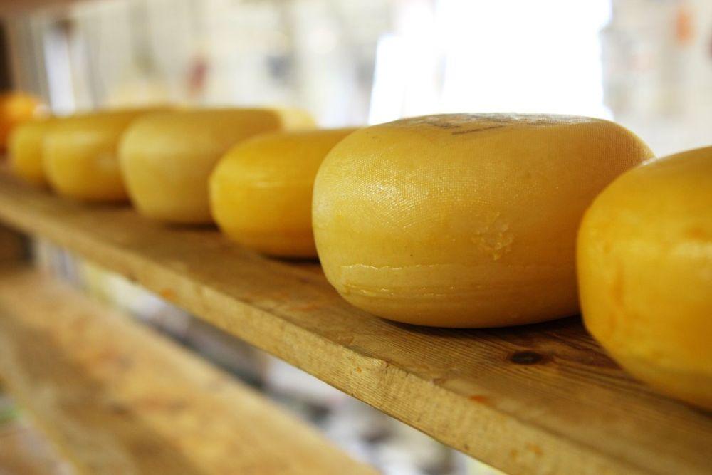 rodzaje żółtego sera