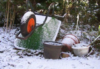 Jak dbać o ogród w zimie?