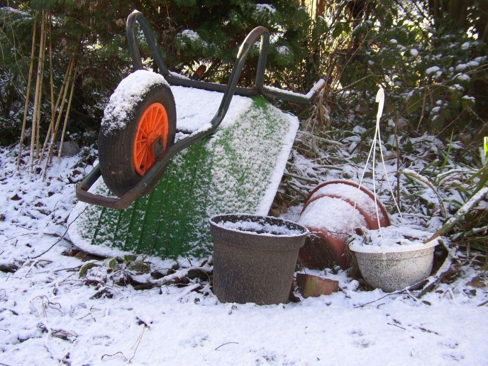 ogród sezon zimowy porządki