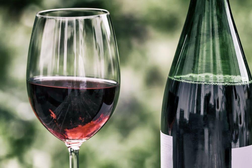Polskie wino? – tak, unas też znajdziemy winnice